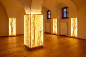 Die Kleider des Lichts / Clothed in Light